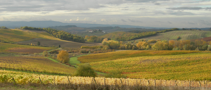 The Tuscan countryside in the autumn, the realm of Italian red wine